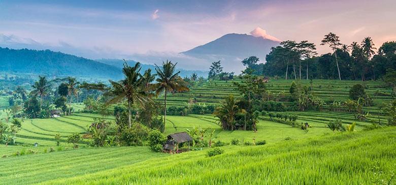 Prosto z Bali